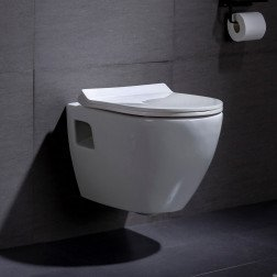 Wandcloset - Hangend toilet Daley Flatline - Inbouwtoilet WC Pot 1